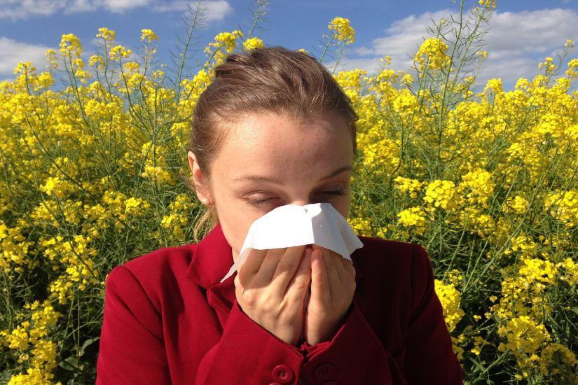 OsijekNEWS.hr: Alergičari oprez! Peludne alergije već vladaju – kako se nosite s njima?