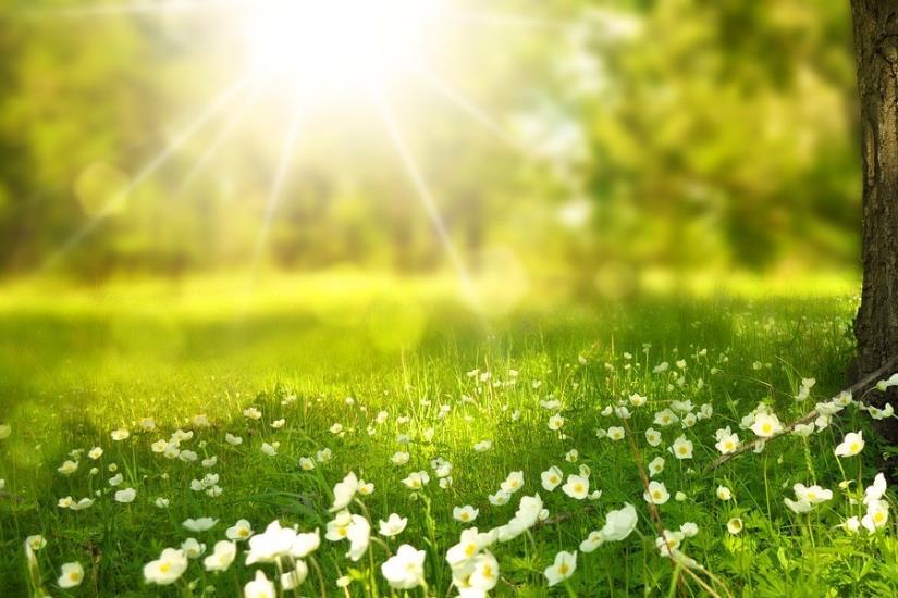 Prvi dan proljeća sunčano!