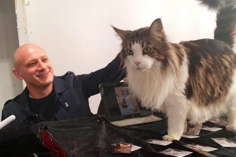 Boris Piližota – najzainteresiraniji dužnosnik Gradske uprave za obilazak Revijalne izložbe mačaka