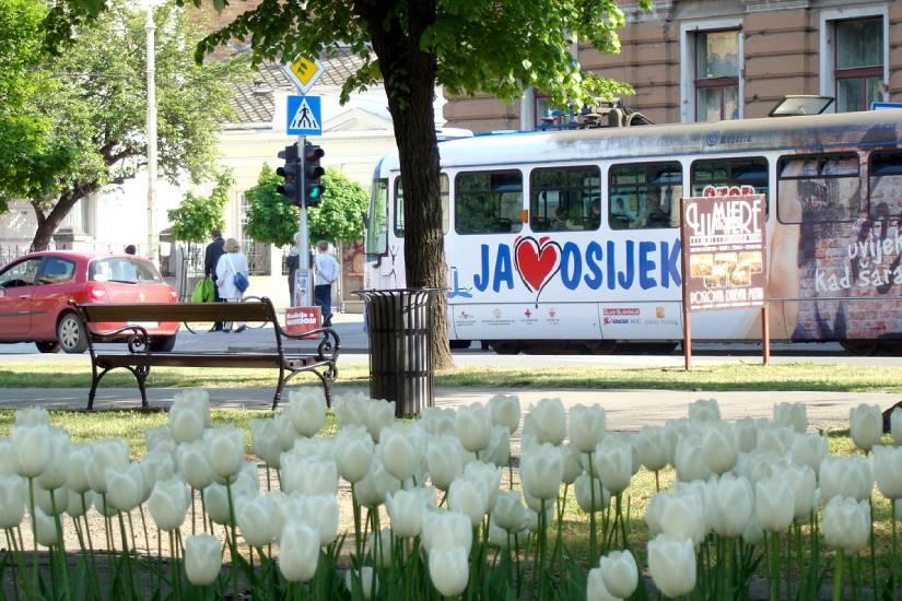 Obavijest o prometovanju tramvaja na dan plesanja Quadrille