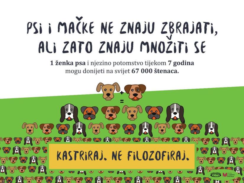 Sobin, Parmać i Gruica: Kastrirani psi zdravi su i razigrani!