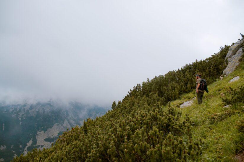 Međunarodni dan planina: Sačuvajmo planinsku bioraznolikost